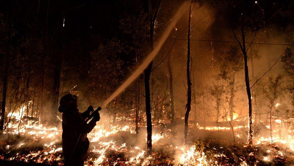 Durch die Brände kamen mindestens 34 Menschen ums Leben