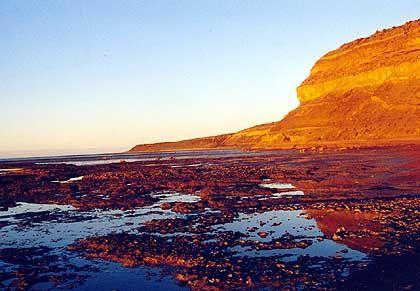 Die Steilküste der Punta Delgada: Die Halbinsel Valdes gehört seit 1999 zum Unesco-Welterbe