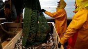 Französische Regierung kündigt Hilfspaket für Fischer an