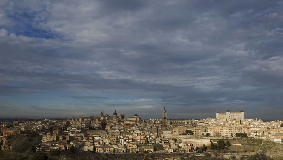 Toledo in Spanien: Erster Tollwutfall seit 1966