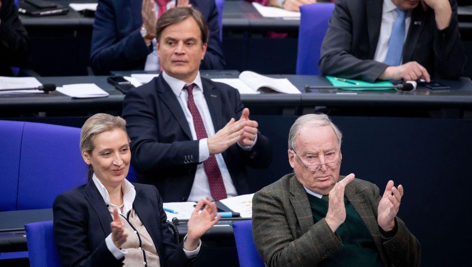 AfD-Bundestagsabgeordnete (Archivaufnahme)