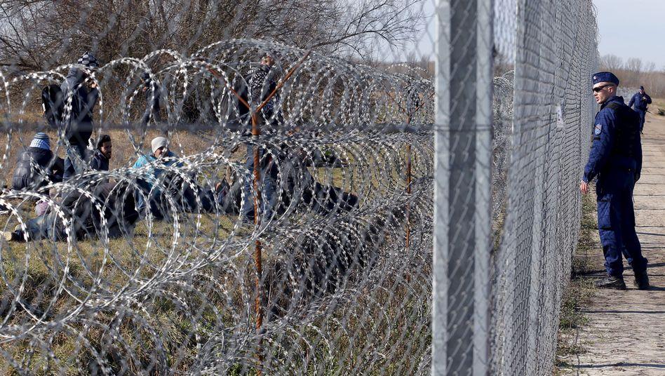 Vor dem Stacheldraht: Flüchtlinge auf der serbischen Seite der Grenze