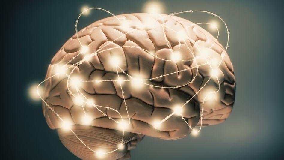 Gehirn bei der Arbeit: Ein, zwei Tricks lösen das Problem