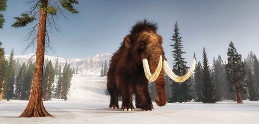 Mammut: Genforscher wollen Urzeittier in die Arktis zurückbringen