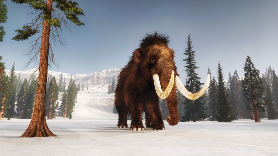 A rendering of the woolly mammoth in its natural habitat