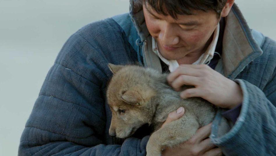 """Kino-Epos """"Der letzte Wolf"""": Wie man Wölfe, Pferde und Behörden zähmt"""