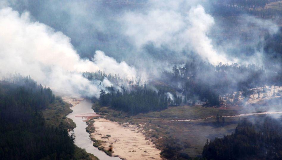 Schon 2017 wüteten in der Republik Sacha Waldbrände, wie diese Aufnahme zeigt.