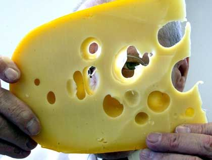 Strict EU hygiene regulations could put an end to centuries-old cheese-making traditions in Alpine communities.