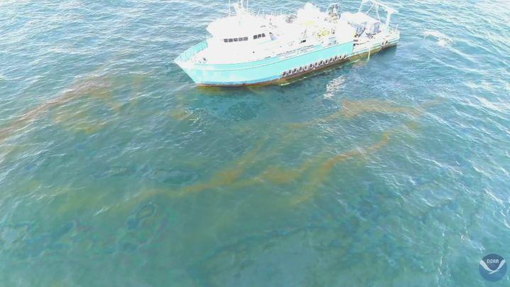 Forschungsschiff im Golf von Mexiko: Täglich bis zu 4.800 Liter Öl einsammeln