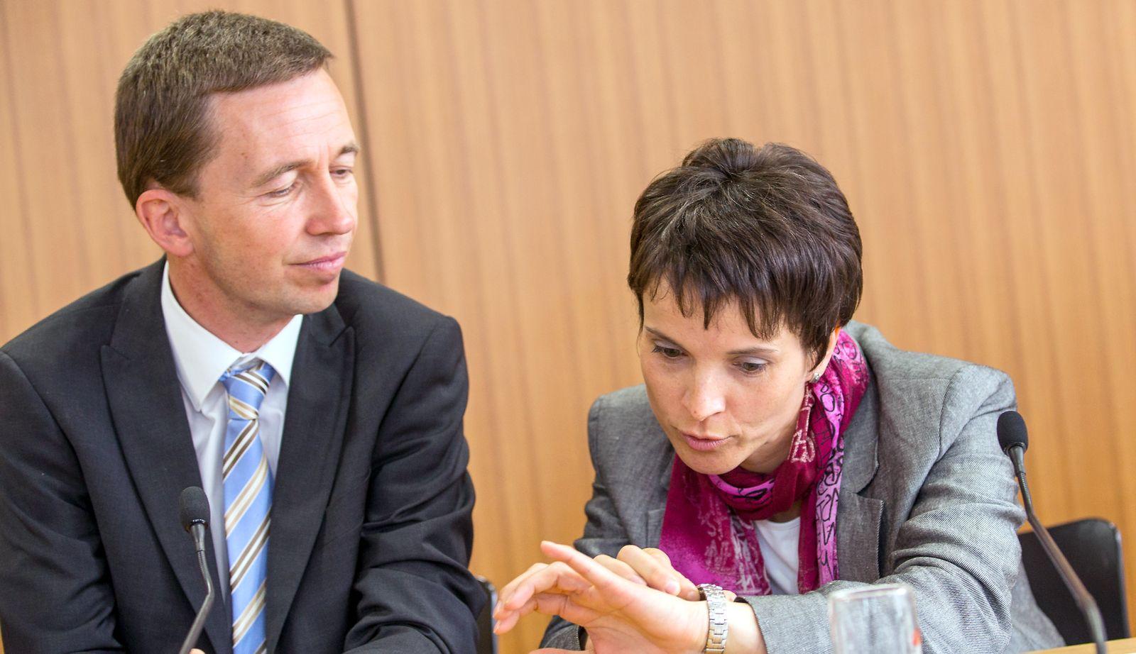 AFD Sachsen/ Wahlkampfauftakt/ Petry/ Lucke