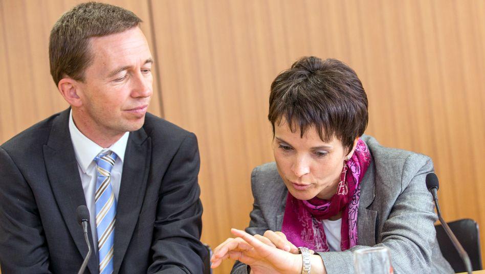 AfD-Vorstandssprecher Lucke und Petry: Für wen läuft die Uhr ab?