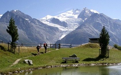 Switzerland, a country famed for its landscapes is quickly becoming the biggest producer of halal processed food.