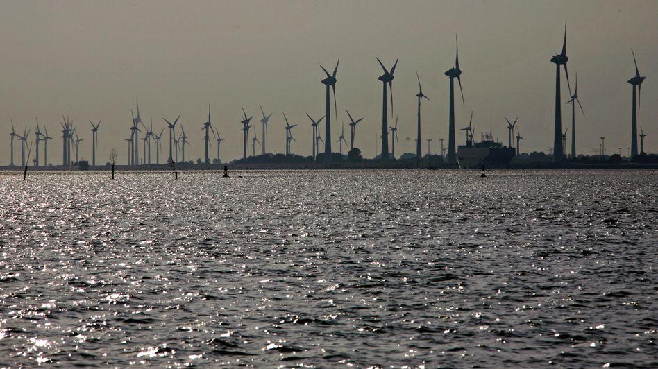 Windpark an der Nordsee: Schwarz-Gelb gelobt die Energiewende