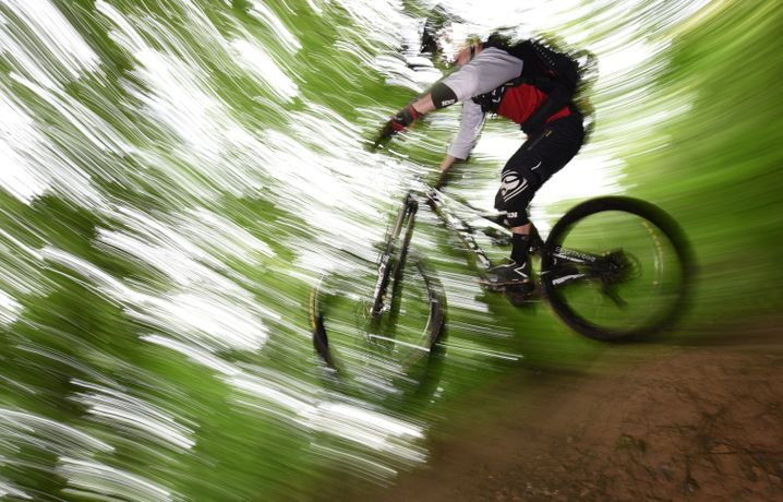 Mit Mountainbike im Wald: Für jede Situation das passende Rad parat