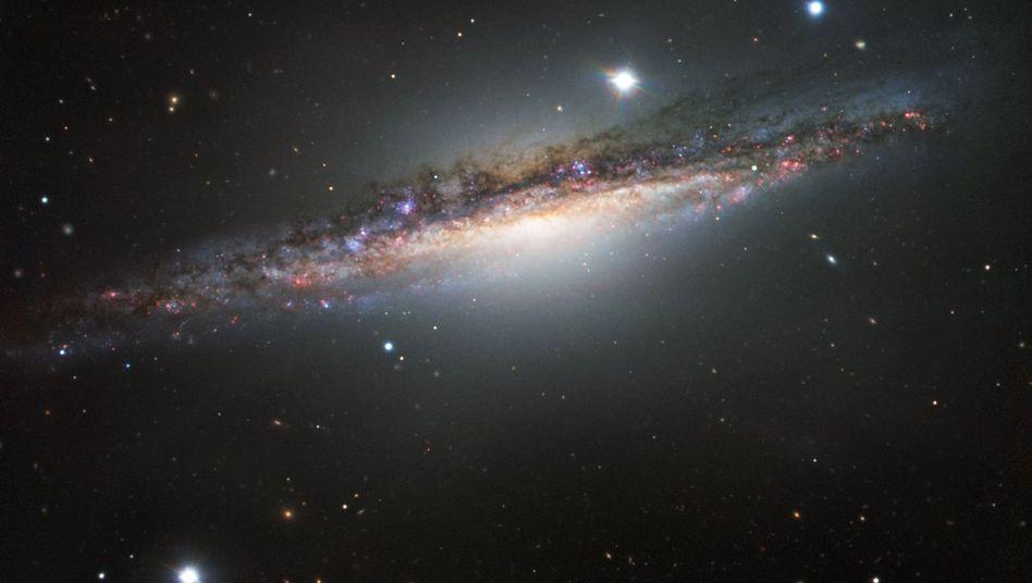 Die Galaxie NGC 1055