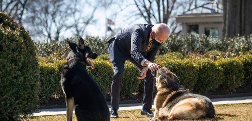 US-Präsident Biden trauert um Familienhund Champ