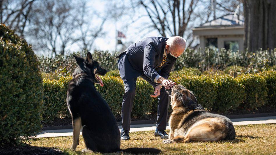 Präsident Biden streichelt Champ: »Alles war sofort besser, wenn er neben uns war«