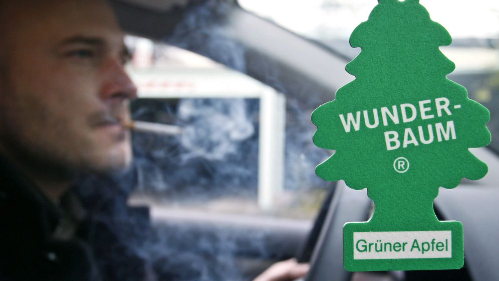 Geruchsbeseitigung in Autos: Wenn der Duftbaum versagt