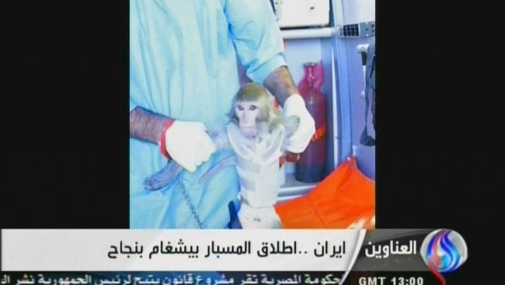 Weltraumprogramm: Iran schießt Affe ins All
