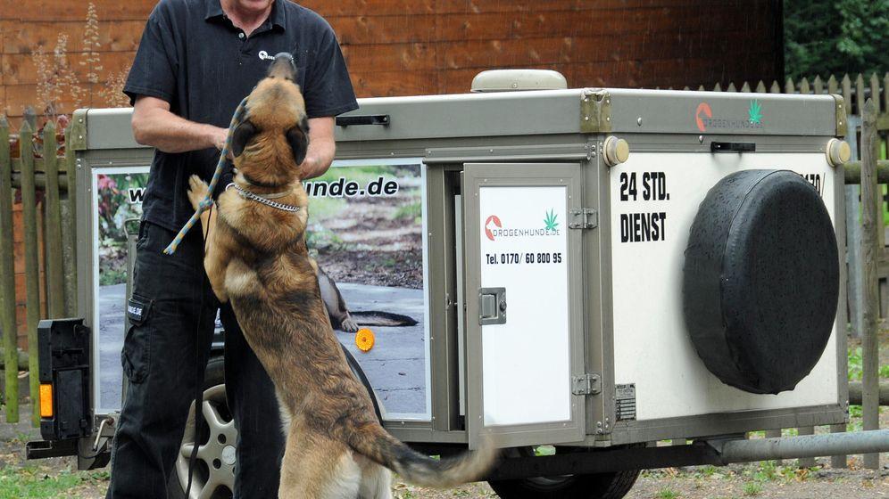 Drogenhund zum Mieten: Dope im Kinderzimmer