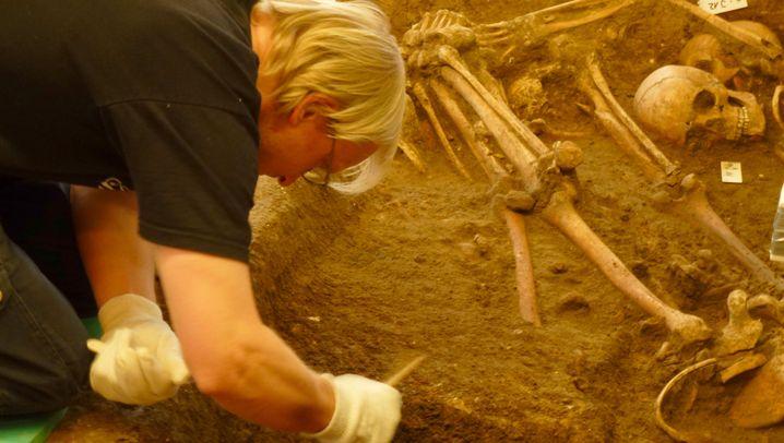 Schlachtfeldarchäologie: Ein Grab im Rapsfeld