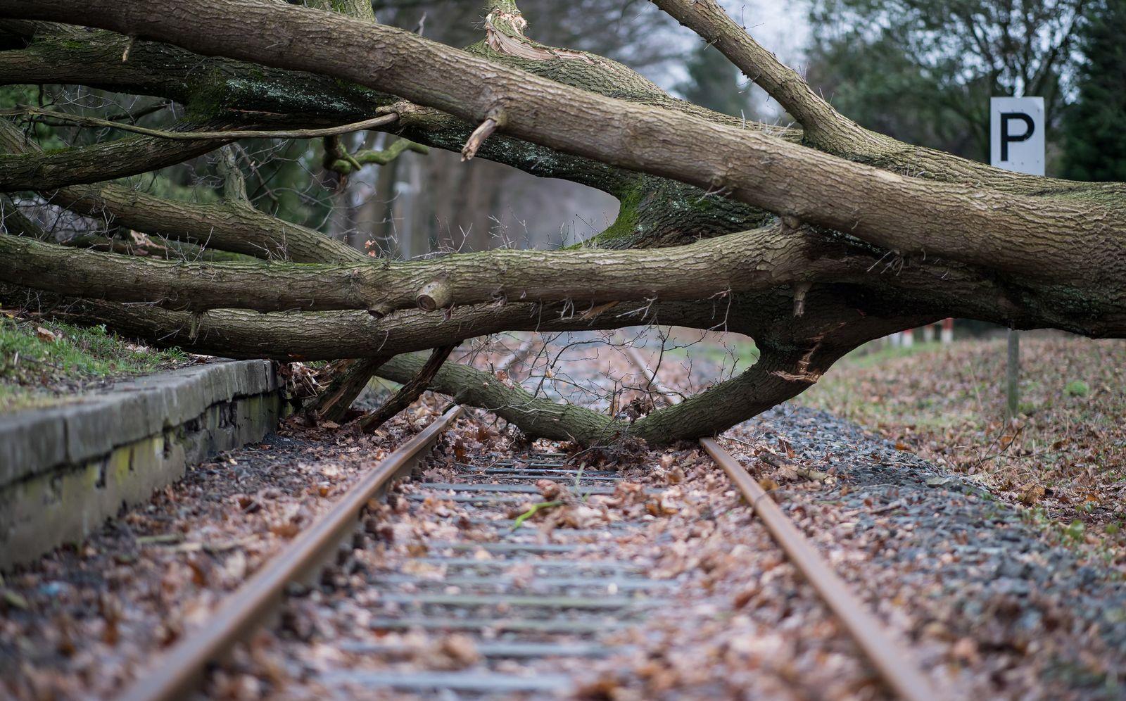 "Sturmtief ""Friederike"" / Bahn"