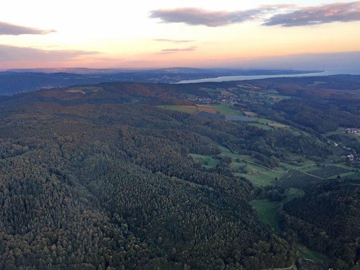 A bird's-eye view of the region