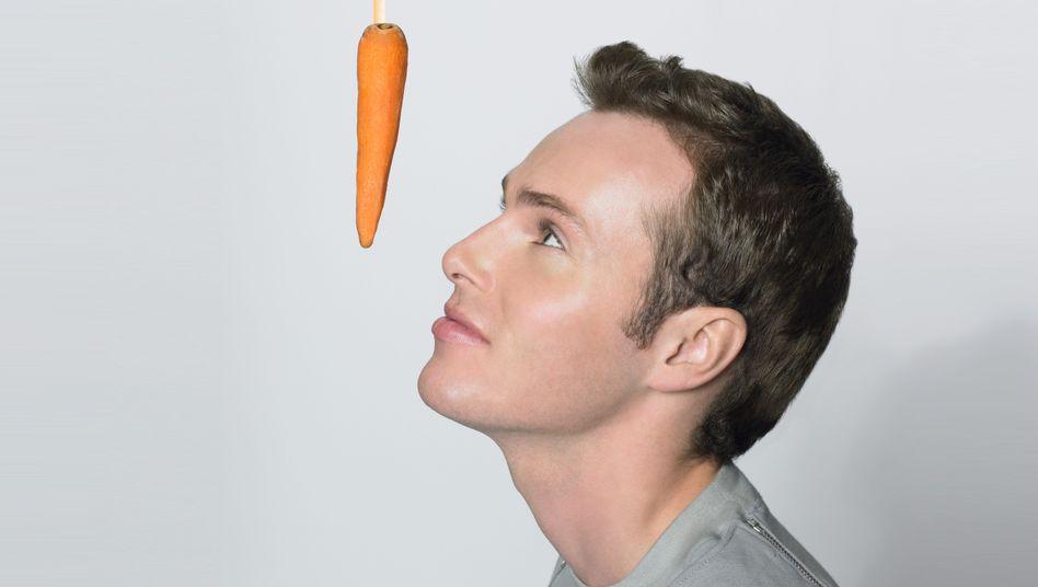 Das Karottenprinzip: Reicht zur nachhaltigen Motivation sicher nicht