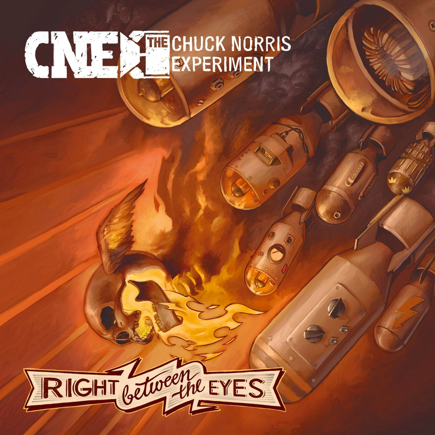Amtlich/ Chuck Norris Experiment: Right Between Your Eyes