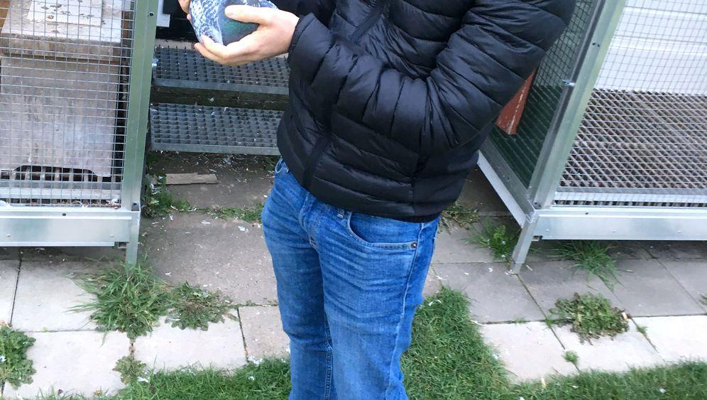 Junger Brieftaubenzüchter im Ruhrgebiet: Aus der Vogelperspektive