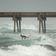 """Sturm """"Isaias"""" erreicht US-Ostküste in Hurrikan-Stärke"""