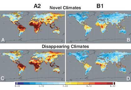 Regenwald in Bordeauxrot: Globale Erwärmung schadet hier Flora und Fauna besonders stark