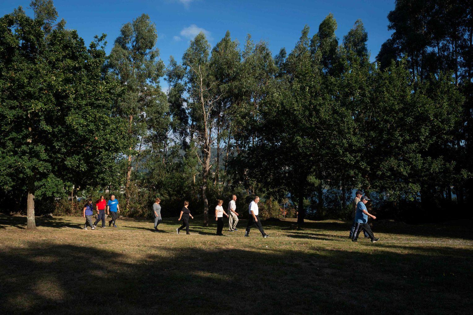 Spanische Gesellschaft für Kardiologie Diät gegen Fettleibigkeit
