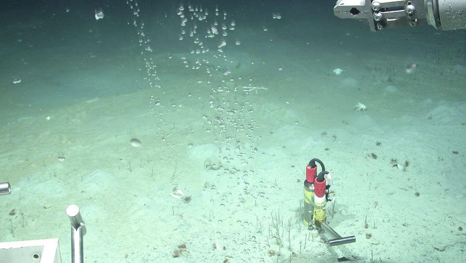 Meeresboden vor der pakistanischen Küste in knapp 3000 Metern Tiefe: Erdbeben führte zu großer Methan-Freisetzung