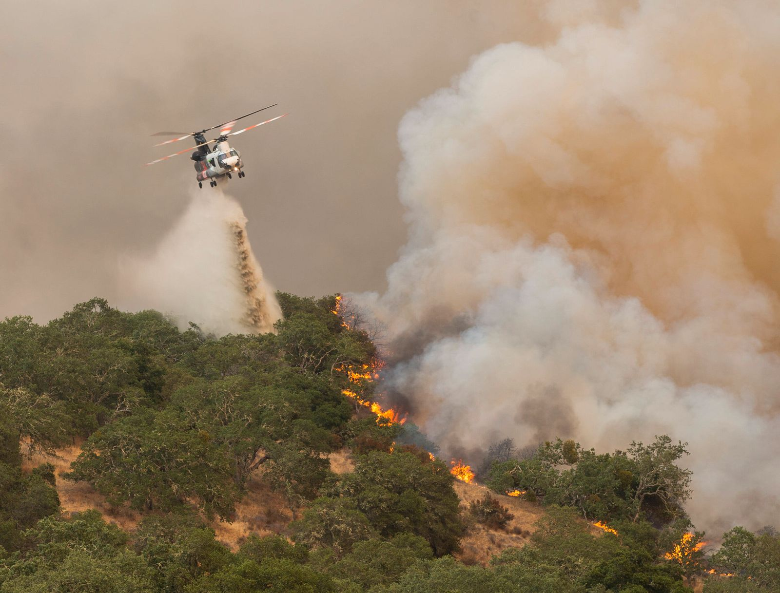 August 19, 2020, Carmel Valley, California, U.S.A: A Chinook helicopter drops water on a active fire line that s burning