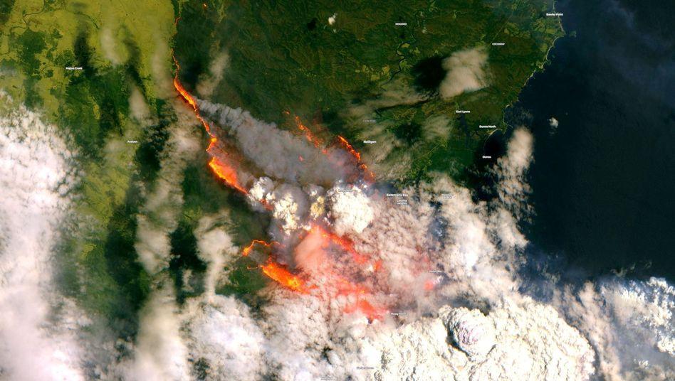 Die Feuer in Australien sind selbst aus dem All zu sehen