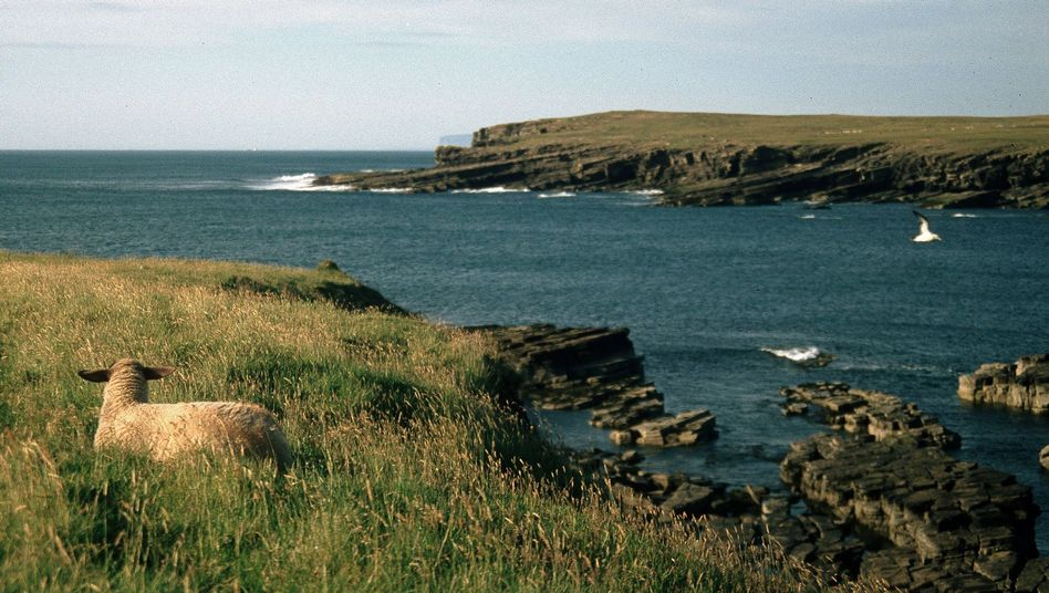 Insel Westray