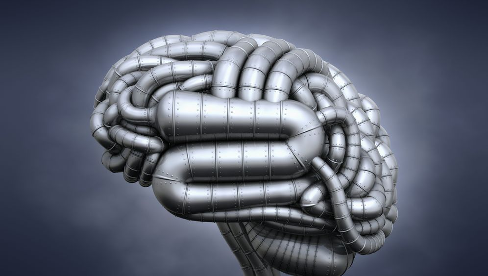 Intelligenztest: Das IQ-Trainingslager