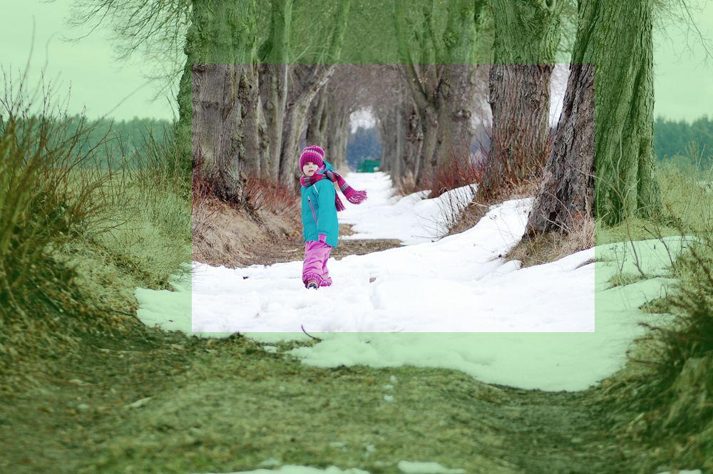 EINMALIGE VERWENDUNG Fokussiert Februar/ vergleichsfoto2