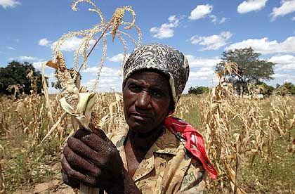 Dürre in Simbabwe (Archivbild): Ginge es Afrika ohne Entwicklungshilfe besser?