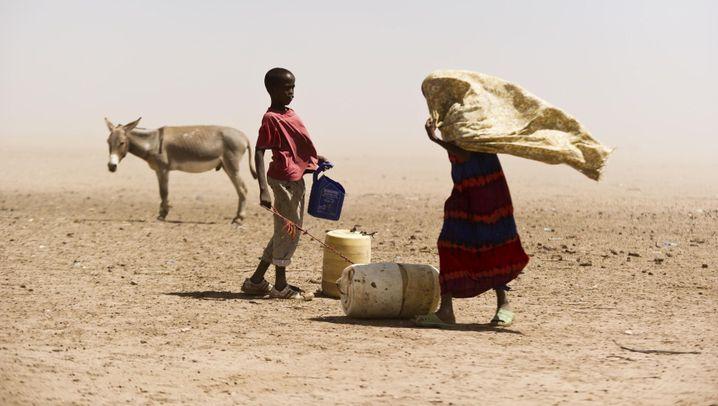 Ostafrika: Hungersnot bedroht Millionen