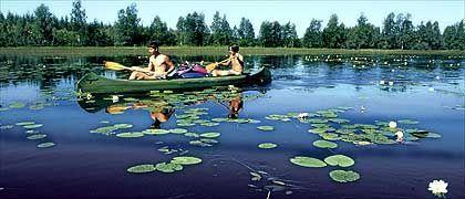 Paddeln auf dem Saimaa-See: Stille in der menschenleeren Seenlandschaft