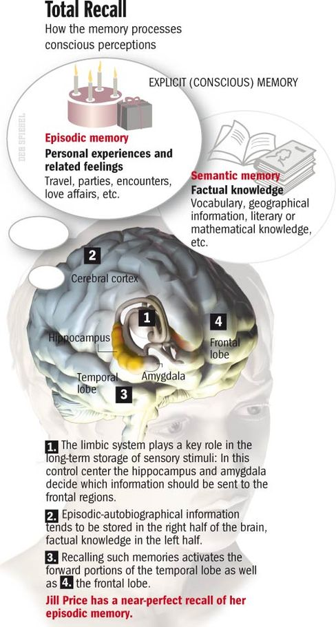 Total Recall: An Anatomy of Memory