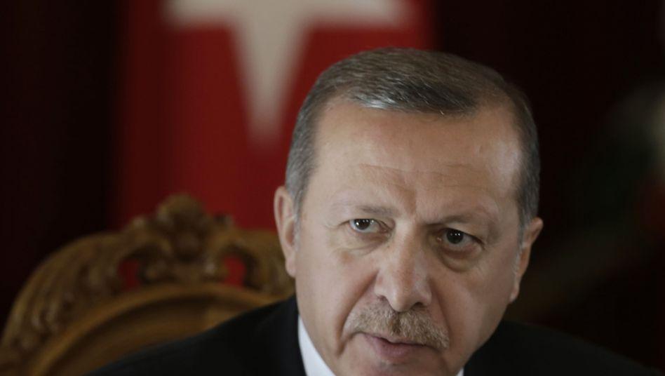 Der türkische Präsident Recep Tayyip Erdogan (Archiv): Zähne fletschender Kettenhund