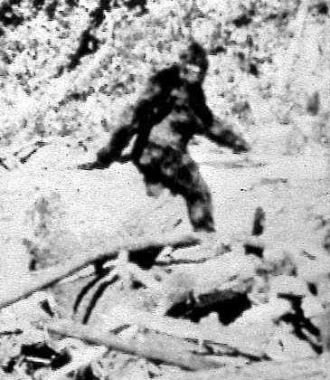 Angebliches Bigfoot-Foto von 1967: Mutter im Affenkostüm?