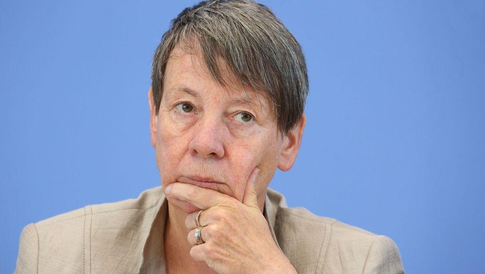Umweltministerin Hendricks: Kritik von allen Seiten