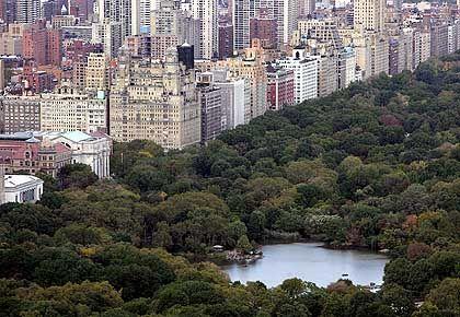 Häuser am Central Park in New York: Preissteigerungen als Basis eines üppigen Lebensstils