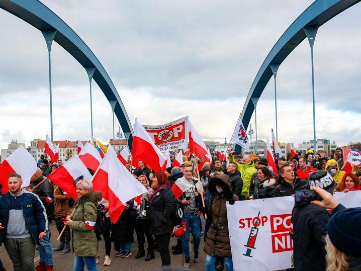 Polnische Fahnen bei der Demo