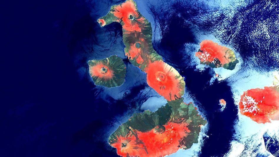 """Vulkankegel der Galapagosinseln auf Bild von Erdbeobachtungssatellit """"Proba-V"""""""