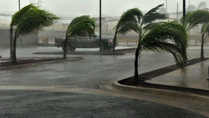 """Super-Hurrikan: """"Patricia"""" verschont Mexiko"""